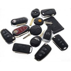 Carcase si telecomenzi auto